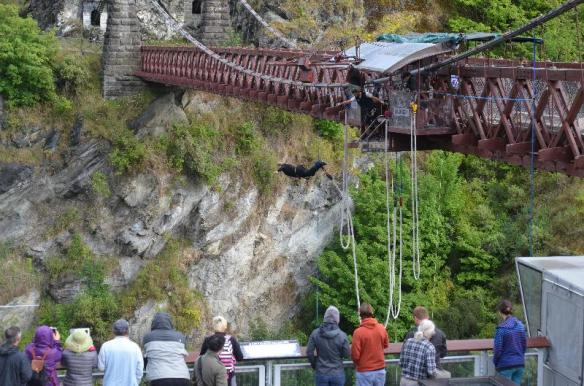 bungy4